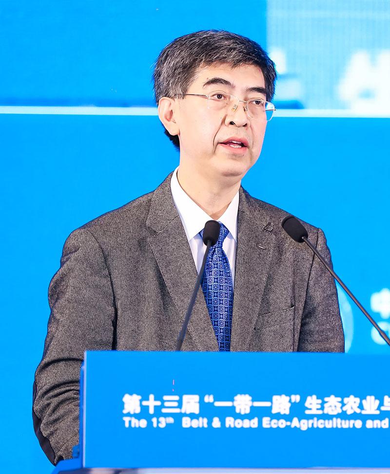 Lv Hongwei